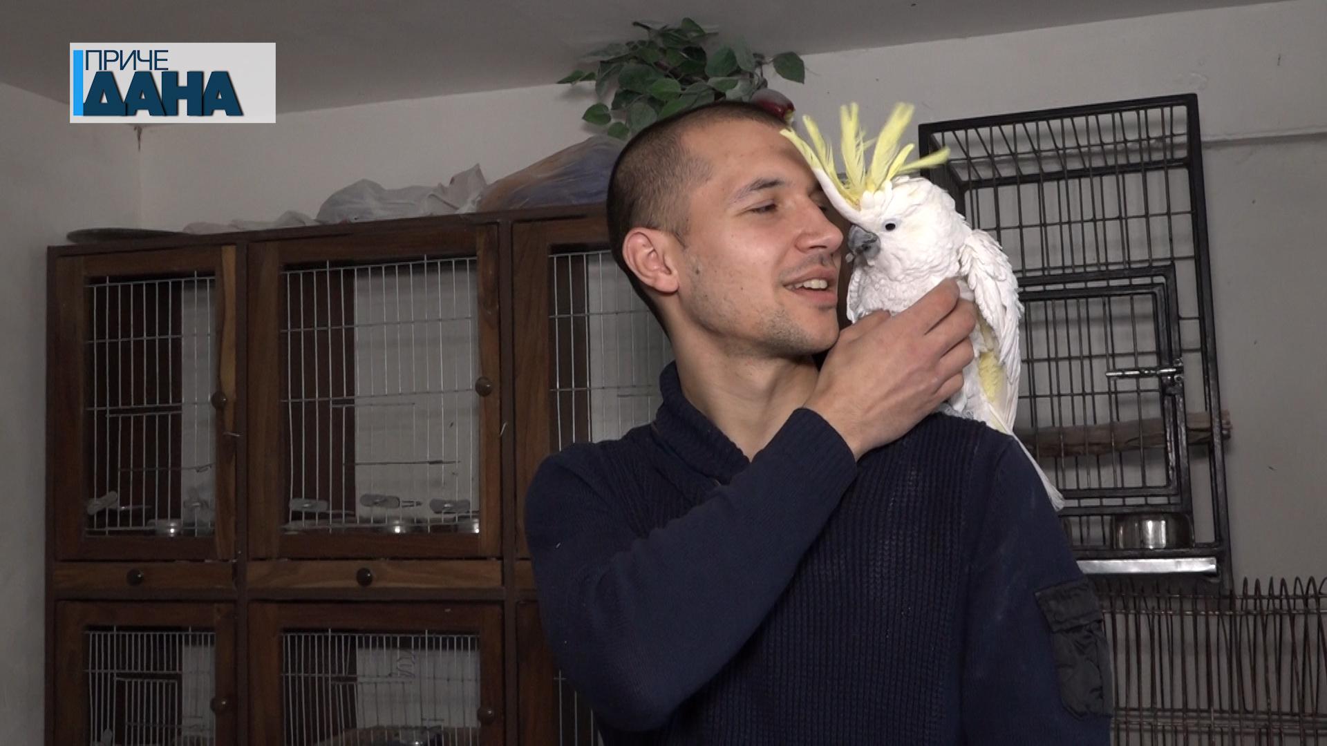 Stefan Švabić iz Čepura čuva više od 100 papagaja različitih vrsta kao i njihove mladunce
