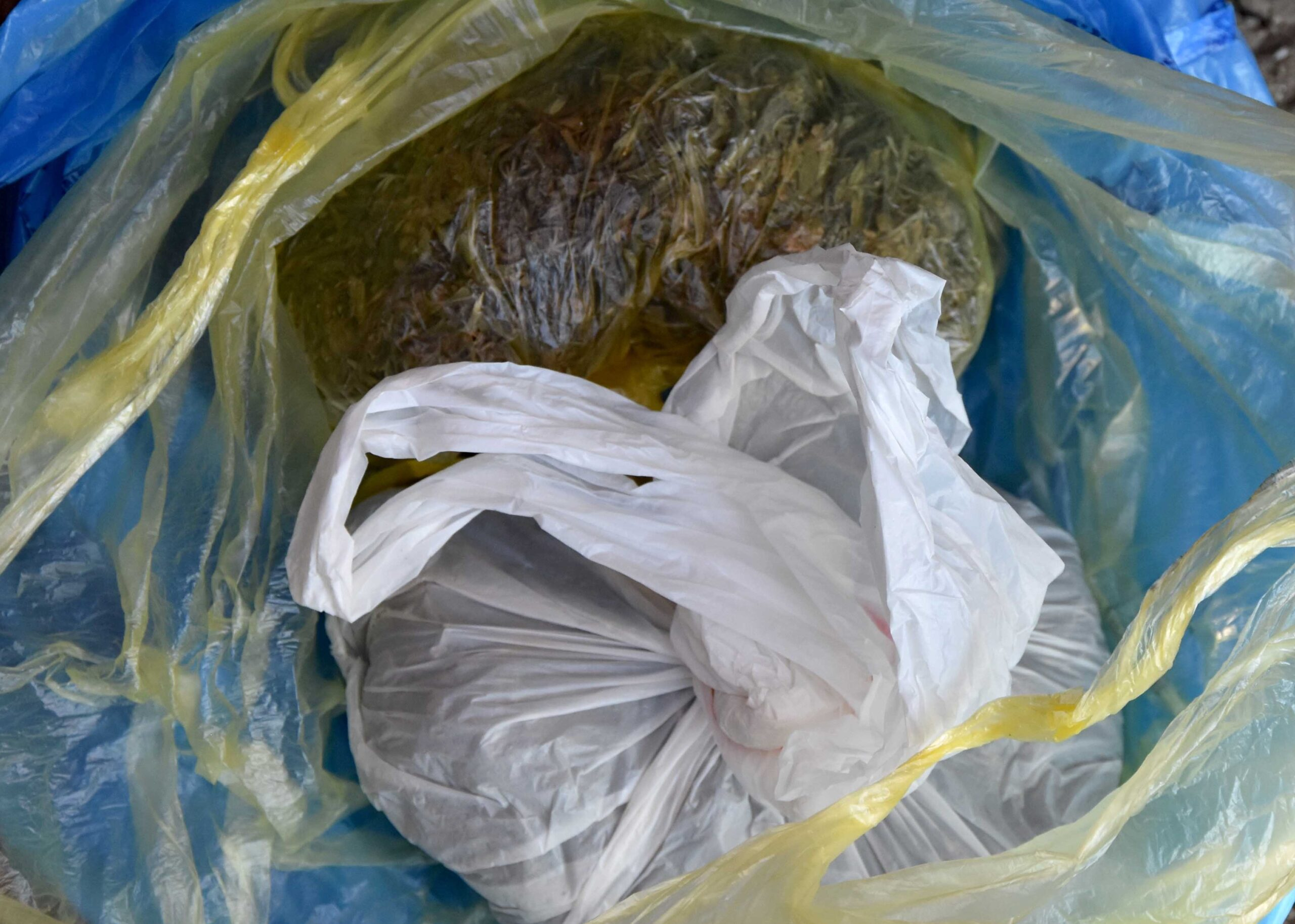 Uhapšen Jagodinac zbog neovlašćene proizvodnje i stavljanje u promet opojnih droga